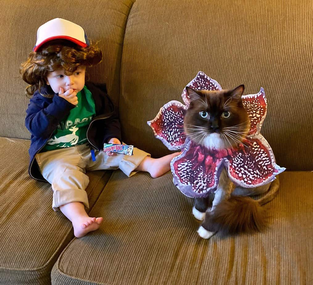 23 Pop Culture Villain Costume Ideas for Toddlers, Babies, or Young Children